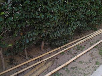 お庭の手入れ・草刈り・生垣・垣根の施工事例 お庭の手入れ・草刈り・生垣・垣根の施工事例|仙台の便